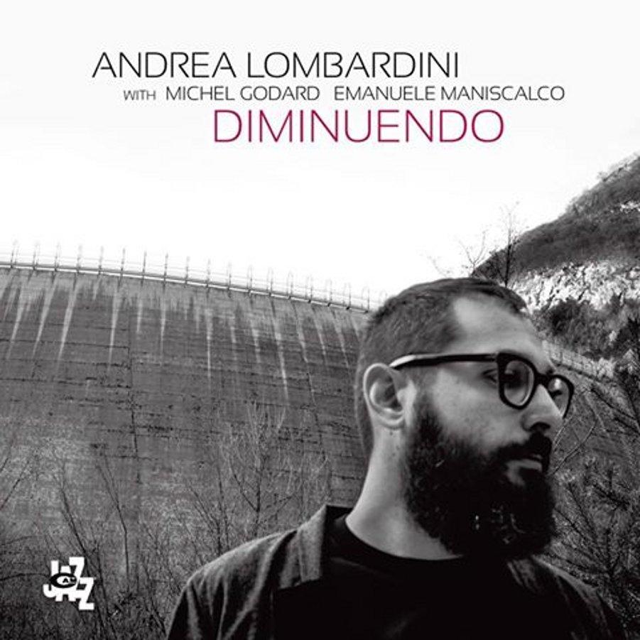 Andrea LombardiniDiminuendoCAM, 2016