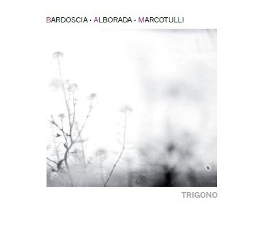 Bardoscia, Arcolada, Marcotulli</br>Trigono</br>Tǔk, 2016