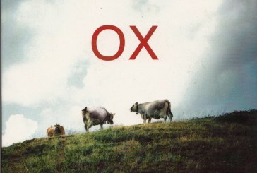 Oscar Del Barba </br>Ox </br>DOT Time, 2017