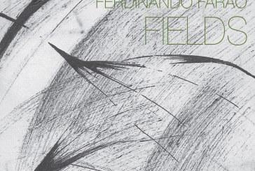 Enzo Rocco, Ferdinando Faraò</br>Fields</br>Setola di Maiale, 2017