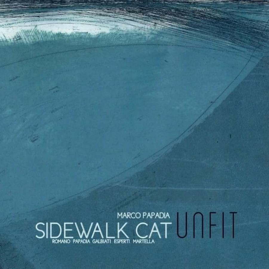 Sidewalk Cat </br>Unfit</br>Emme, 2017