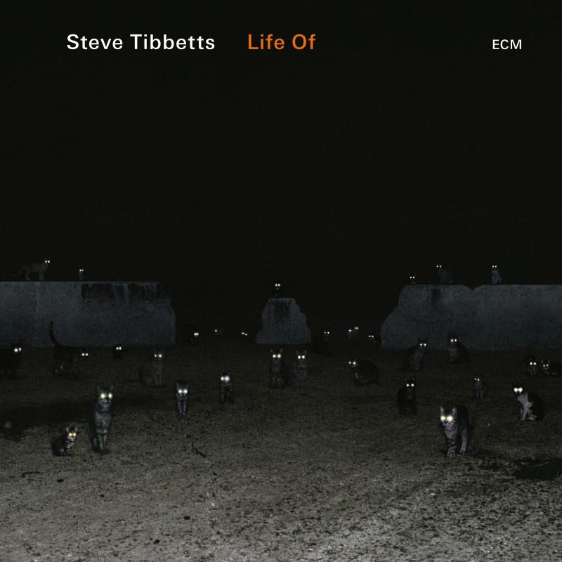 Steve Tibbetts</br>Life Of</br>ECM, 2018