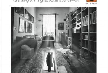 Serena Spedicato, Nicola Andrioli<br/> The Shining of Things <br/>Dodicilune, 2019