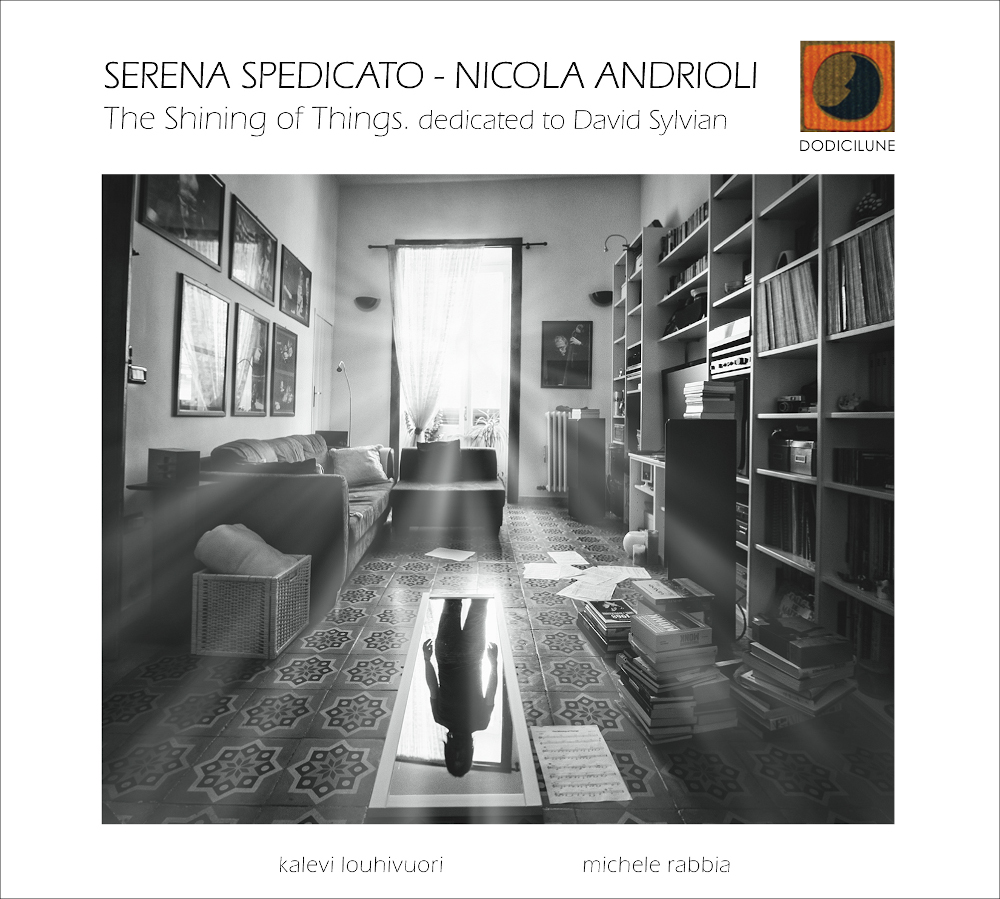 Serena Spedicato, Nicola Andrioli<br/> The Shining of Things <br/>Dodicilune, 2019