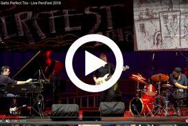 Roberto Gatto Perfect Trio<br/>Live at Perc Fest
