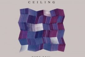 Dana Saul<br/>Ceiling<br/>Endectomorph, 2019