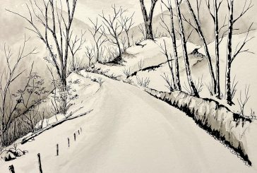 Riccardo Chiarion<br/>Quiet Stories<br/>Drawnmusic ,2020