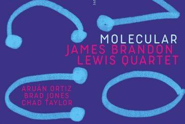 James Brandon Lewis <br/>Molecular<br/>Intakt, 2020