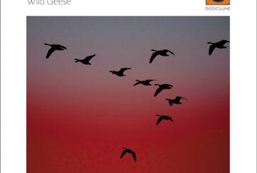 Gianni Lenoci Trio feat. Ra Kalam Bob Moses<br/>Wild Geese<br/>Dodicilune, 2020