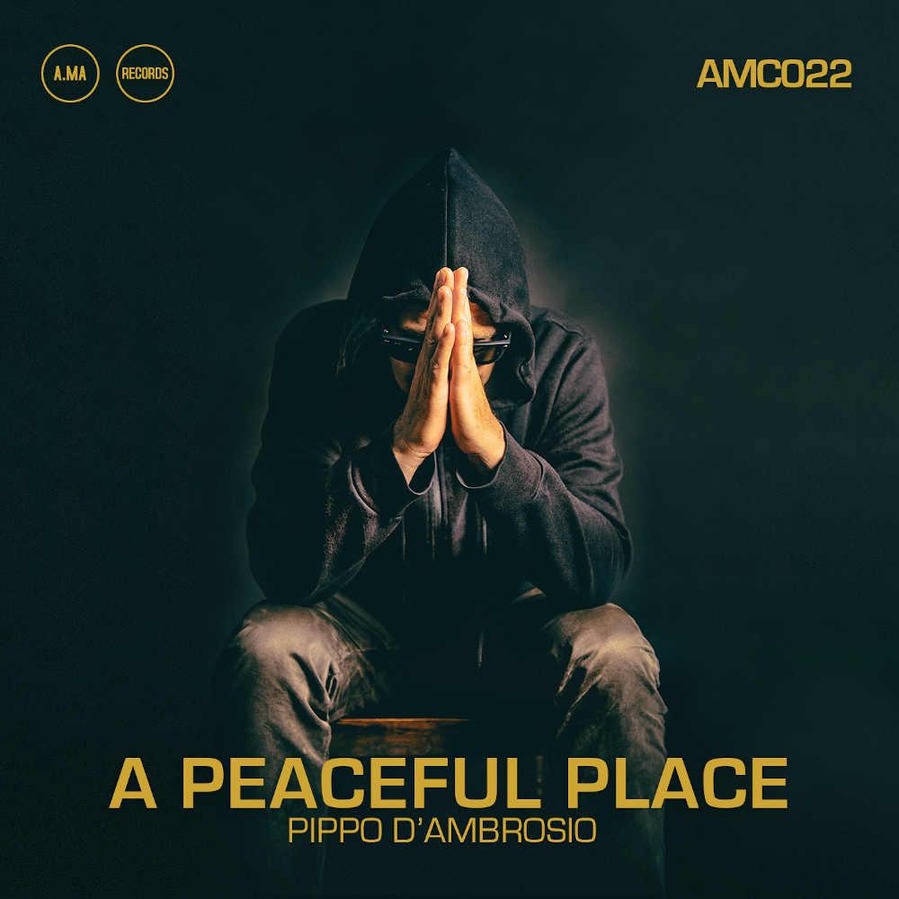 Pippo D'Ambrosio<br/>A peaceful Place<br/>A.Ma, 2020