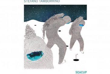 Stefano Tamborrino<br/>Seacup<br/>Tǔk Music