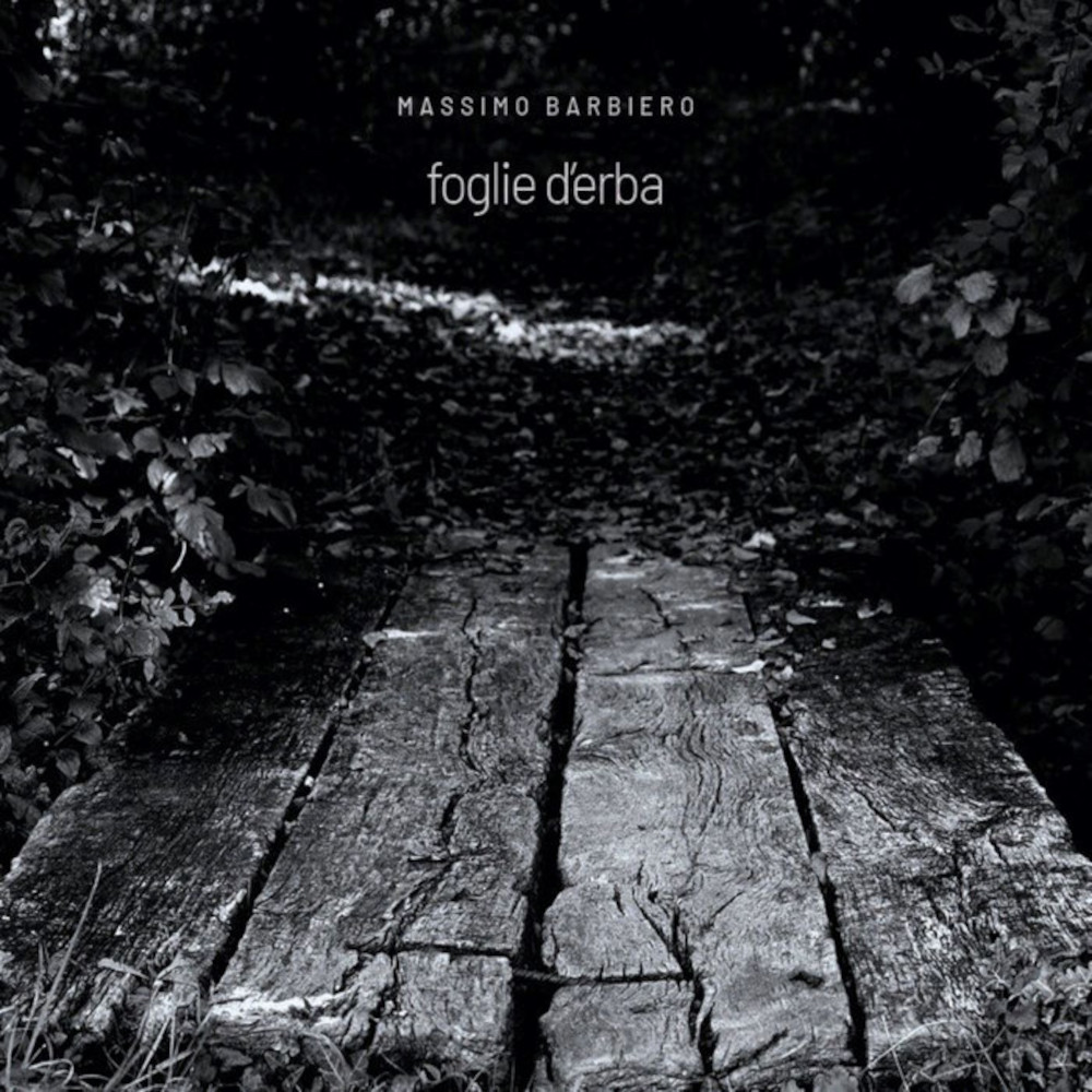 Massimo Barbiero<br/>Foglie d'erba<br/>Auto, 2020