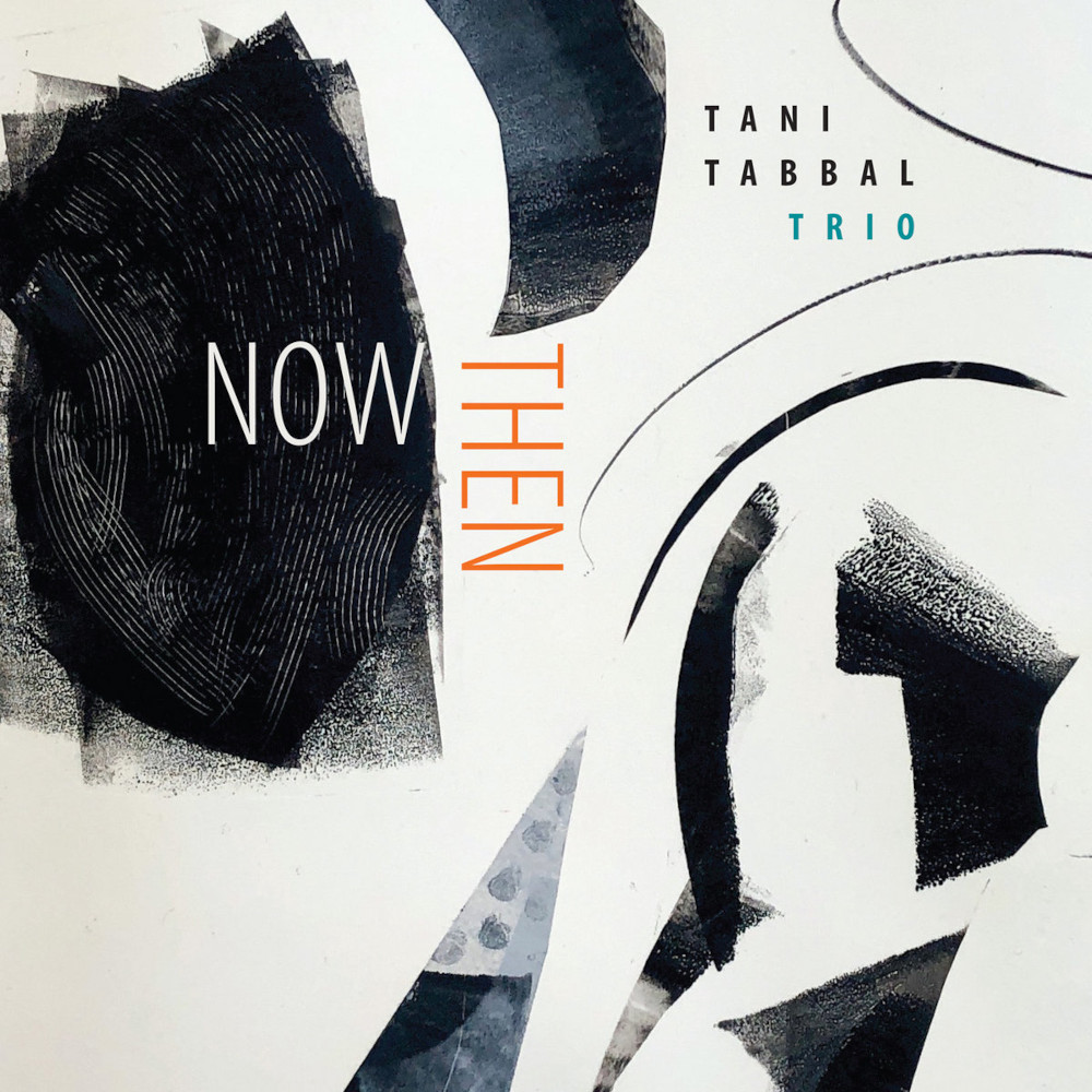 Tani Tabbal Trio <br/>Now Then<br/>Tao, 2020
